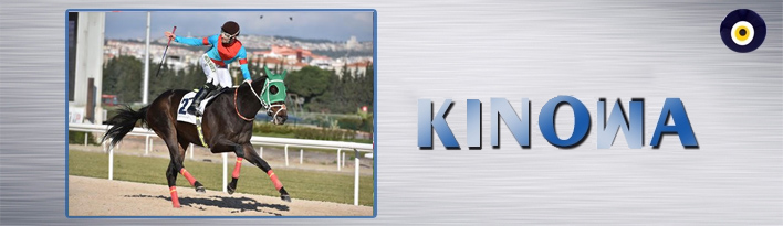 Yazar: KINOWA